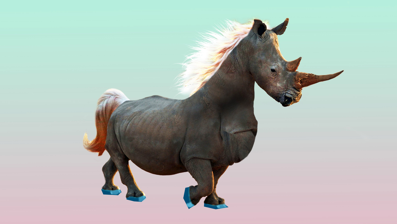 A rhinocorn -- a cross between a rhino and unicorn.